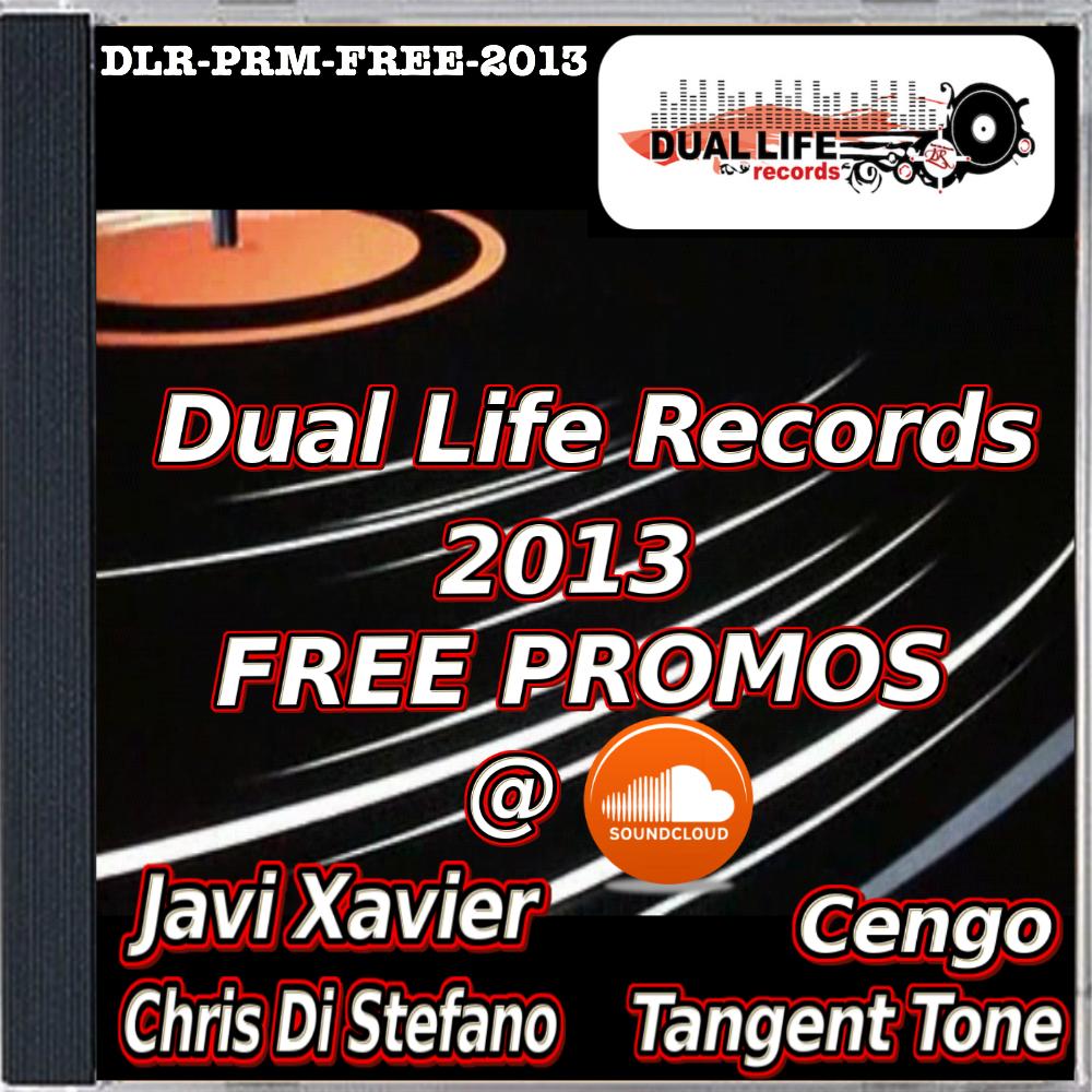 DLR-PRM-FREE-2013 1000x1000